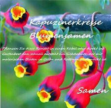 25x Kapuzinerkresse Samen Hingucker Pflanze Rarität Blumen