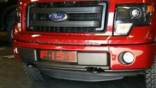 2009-2014  Ford F-150 F150 black with red mesh Lower Bumper Grille ecoboost
