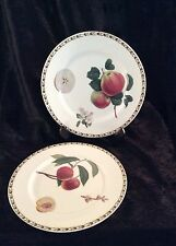 2 Queen's Fine Bone China Salad Plates - Royal Horticultural Society Hookers Fru