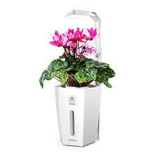 Hydroponic Planter Automatic Watering Flower Pot with Growth Light