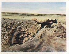 Dog German Soldiers western front War Deutsches Heer WWI WELTKRIEG 14/18 CHROMO