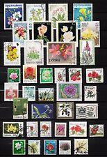 101361/ Blumen und Pflanzen - schönes Lot - o - nichts gerechnet - siehe scan
