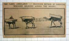 1915 Camel Ambulance Ingenious Method Carry Wounded Soldiers Across The Desert