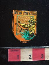 New Mexico Bird ROADRUNNER Patch Emblem 73B4