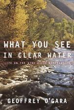 What You See in Clear Water : Life On the Wind River Reservation