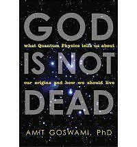 Very Good, God Is Not Dead: What Quantum Physics Tells Us about Our Origins and