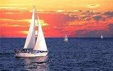 How to Sail Yacht Sailboat Sailing Sea Voyage Handle Boat 30 Books Ocean CD DVD