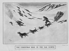 THE CHRISTMAS MAIL BY DOGSLED IN THE FAR NORTH BAGS OF MAIL PULLED BY SLED DOGS