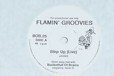 "THE FLAMIN' GROOVIES / DENVER MEXICANS Split 7"" 45"