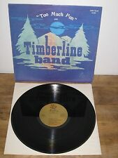 MEGA RARE PRIVATE PSYCH RURAL FOLKROCK w/ SYNTH TIMBERLINE BAND lounge USA