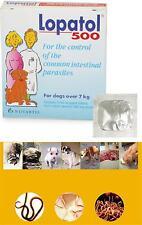 1 Tablet Pet Dog Oral Wormer Tablet Roundworm Tapeworm Worms Tablets Medicine 7k