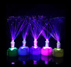 Hot Lamp Stand Home LED Fiber Optic Colorful Changing Garden Decor Night Light