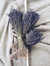200+ Stems Lavender, Preserved, Dry French, Dried, Wedding, Bunch Bouquet Flower