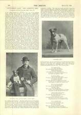 1896 Interview War Artist Mr William Simpson Gentleman Jack Cabmans Dog