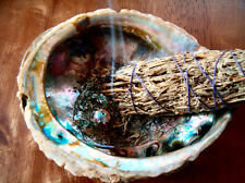 Dried Sage Leaf bundle - SMUDGING | 6 Inch Approx | REMOVING BAD ENERGIES