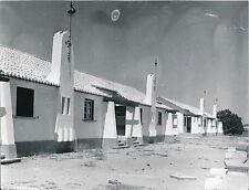 PORTUGAL c. 1950 - Algarve- Div 4041
