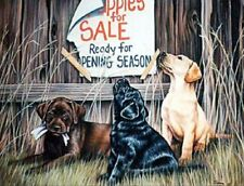 Puppies for Sale by Joanne Graham Labradors, Print 20x28