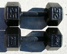 CAST IRON DUMBBELL SET OF 2 EACH 50 LBS WEIGHT EXERCISES HOME WORKOUT SET KIT