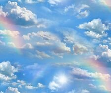 Fat Quarter Rainbow Sky Clouds Cotton Quilting Fabric Elizabeths Studio