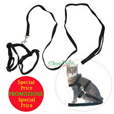 PARURE guinzaglio+pettorina corda leash leine cat dog cane gatto animali NEW