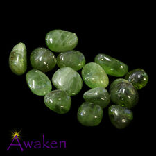 *ONE* PERIDOT Small Natural Tumbled Stone Approx 10-15mm *TRUSTED SELLER*