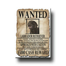 CHOCOLATE LABRADOR Wanted Poster FRIDGE MAGNET New DOG