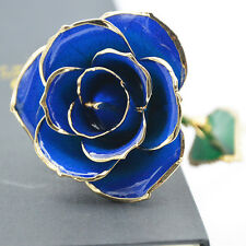 Blue Rose Ocean Gold Dipped/Long Stem Real Flower With Marry Christmas Gift Box
