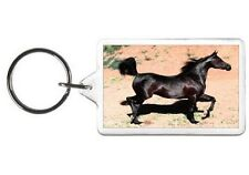 BLACK BEAUTY HORSE NOVELTY PHOTO PONY COLT KEYCHAIN