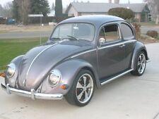 Volkswagen: Beetle - Classic rust free