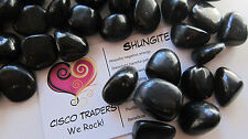 *THREE* Shungite Tumbled Stone Russia QTY3 15-20mm Healing Crystal Toxins Purify