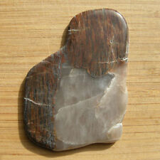 "Unusual Gray Agate Crystal & Brown Petrified Wood Polished Stone Slice 3.5"" Long"