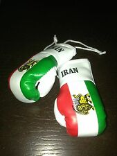 IRAN / IRANIAN FLAG Mini Boxing Gloves Ornament BRAND NEW