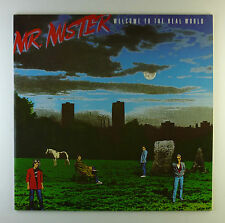 "12"" LP - Mr. Mister - Welcome To The Real World - A2830 - washed & cleaned"