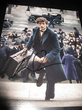 EDDIE REDMAYNE SIGNED AUTOGRAPH 8x10 PHOTO FANTASTIC BEASTS ROWLING COA AUTO D