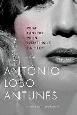 What Can I Do When Everything's on Fire? by Antonio Lobo Antunes (2008,...