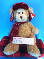 Ty Classic Hudson the Beige Bear in Red Cap and scarf 2006 plush(310-1378-1)