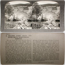 Keystone Stereoview of a Hillside near Engan, NORWAY From the RARE 1200 Card Set