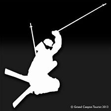 Ski Winter Decal Sticker Die Cut Sports Downhill Skiing Ski Binding Stick