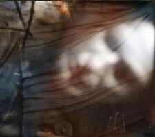 Din Brad - Dor CD 2012 digi Negura Bunget folk Prophecy Productions