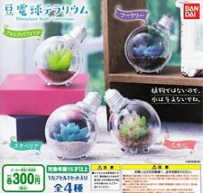 Miniature Bulb Terrarium 4 Pics Set Capsule Toys Gashapon From Japan