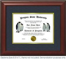 Penguin Diploma - Personalized with your Name/Date - Happy feet, Penguins