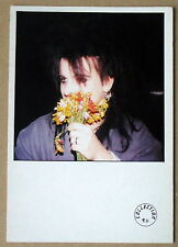 Carte postale Simon Gallup,The cure  ,CPSM