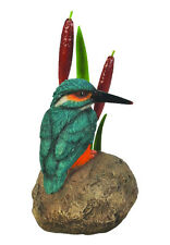 Vivid Arts - REAL LIFE BIRDS ON FLOWERS - Kingfisher On Stone With Bullrush