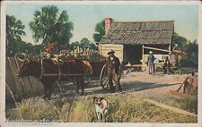 Uncle Abe's Cabin, South Carolina, old coloured postcard, posted 1916