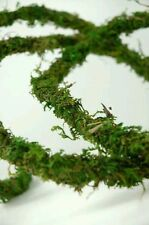 Natural Handmade Moss Vine - Vivarium Terrarium Decor for Reptile, Lizard, Snake