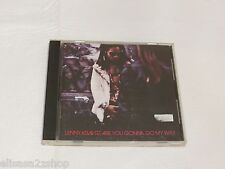Are You Gonna Go My Way by Lenny Kravitz CD 1993 Virgin disc believe come on