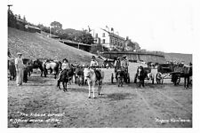 pt2209 - Donkeys at Kids Corner , Filey , Yorkshire - photograph 6x4