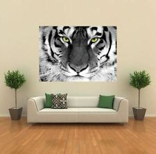 WHITE TIGER ARTY EYE ANIMAL  NEW GIANT POSTER WALL ART PRINT PICTURE X1432