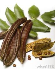 12 FRESH WHOLE MATURE CAROB PODS / Ceratonia siliqua - A Mediterranean Delicacy