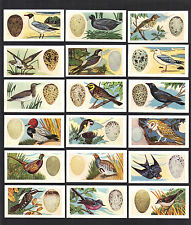 CIGARETTE/TRADE/CARDS.Gaycon.BRITISH BIRDS & THEIR EGGS.(1961).(Complete Set 50)